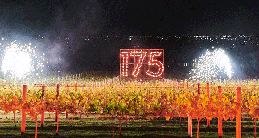 Fireworks over the vineyards