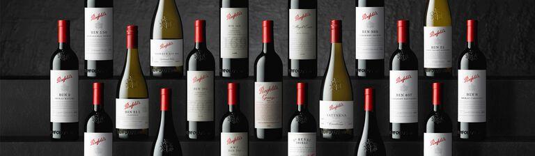 Rows of Penfolds bottles against dark background