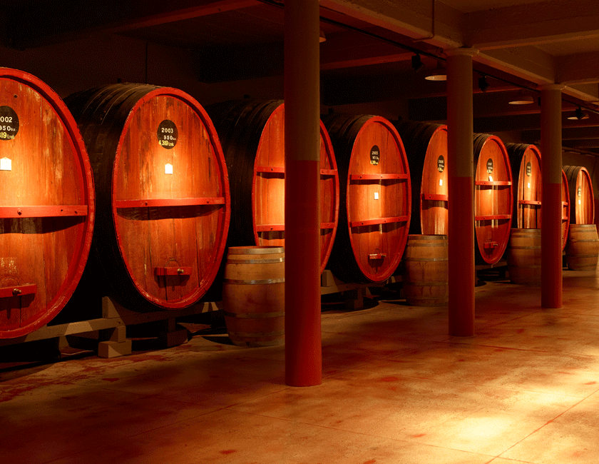Large St Henri barrels at Magill Estate