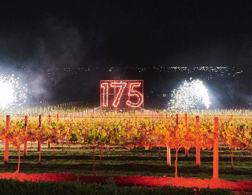 175 fireworks over the vineyard