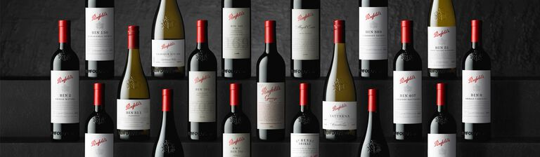 Rows of Penfolds bottles against dark background