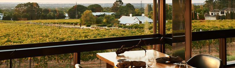 The view over the vines from Magill Estate Restaurant