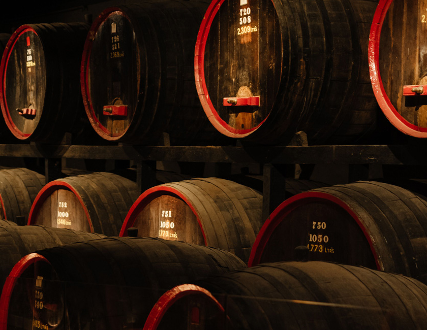 Large St Henri wine barrels at Magill Estate